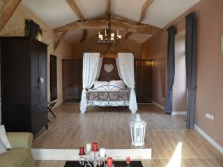 4 independants suites, pool,guest table,SPA - Sainte Foy-la-Grande vacation rentals