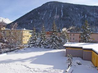 Apartment Altein - 28003 - Davos vacation rentals