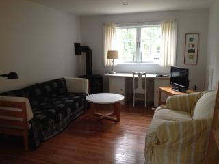 Sunny One Bedroom for Saratoga Track Season - Saratoga Springs vacation rentals