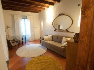 900 sq ft APARTMENT HISTORIC CENTRE FLORENCE ITALY - Florence vacation rentals