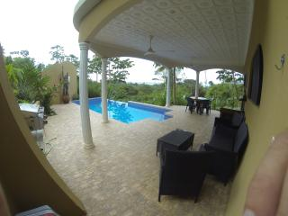 Nice Condo with Internet Access and A/C - Ojochal vacation rentals