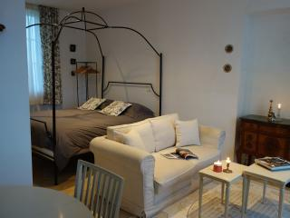 La Terrasse de Mademoiselle, appartement de charme - Versailles vacation rentals