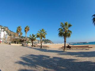 Appartment near  of the beach for 2/7 persons - Blanes vacation rentals