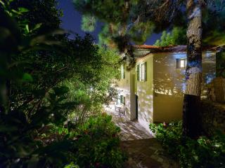 Eressos Village Amazing Rose Garden House! - Vafios vacation rentals