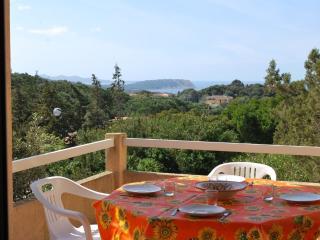 Bilocale delle Palme con vista mare e piscina - Santa Teresa di Gallura vacation rentals