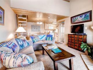 Ski Inn 231 - Steamboat Springs vacation rentals