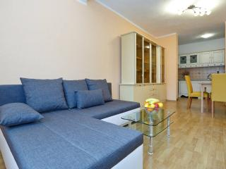 Nice & spacious apartment near sea - Gornji Karin vacation rentals