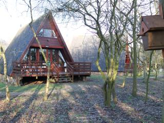 Cute wood cabin by nature reserve - Grafham vacation rentals