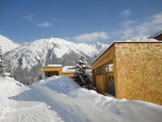 Holiday House Gradonna Mountain Resort - 35672 - Vorarlberg vacation rentals