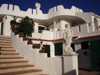 appartamento 7 posti letto a 10 metri dal mare - Peschici vacation rentals