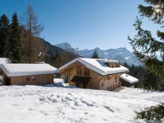 Holiday House Khamariah - 4135 - Vaud vacation rentals