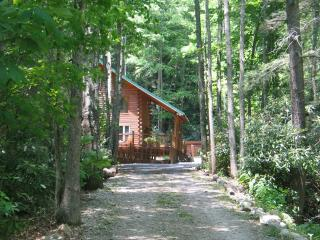 Mountain Log Cabin next to a creek with Hot tub - Shady Valley vacation rentals