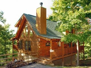 Amy's Mountain Chateau - Sevierville vacation rentals