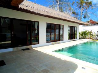 Villa Orchid - Ungasan vacation rentals