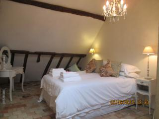 Bright Townhouse with Internet Access and Microwave - Fontevraud-l'Abbaye vacation rentals
