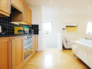Deluxe 5* Penthouse Apartment (Sleeps 4) - London vacation rentals