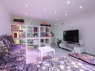 1 bedroom Condo with Internet Access in Avignon - Avignon vacation rentals