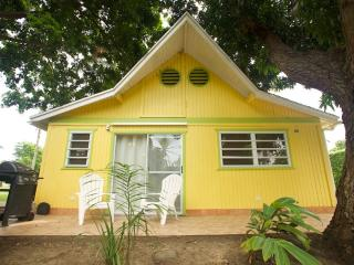 Charming Cottage by the Ocean - Rincon vacation rentals