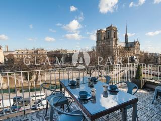 Notre Dame view - LAST MINUTE OFFER - Paris vacation rentals