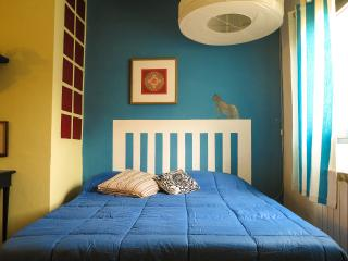 Octopus Apartment - Borgo San Frediano - Florence vacation rentals