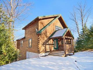 Beautiful Cabin with Deck and Internet Access - Gatlinburg vacation rentals