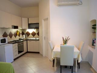 Nice 1 bedroom Condo in Korcula Town - Korcula Town vacation rentals