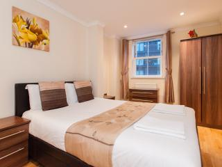 *XMAS & NEW YEAR SALE* Contemporary Central London - London vacation rentals