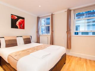*REDUCED* London Zone 1 Apartment - London vacation rentals
