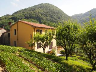 LA CASA 5 - Province of Lucca vacation rentals