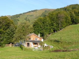 5 bedroom Ski chalet with Internet Access in Accous - Accous vacation rentals