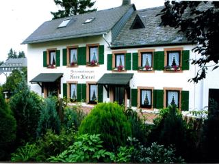 Nice House with Internet Access and Television - Manderscheid vacation rentals