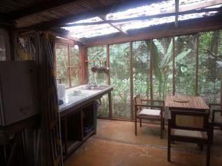 Perfect 4 bedroom Puerto Viejo de Talamanca Apartment with Deck - Puerto Viejo de Talamanca vacation rentals