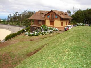 LAGOA GARDEN STUDIO,cozy flat in the mountains !!! - Funchal vacation rentals