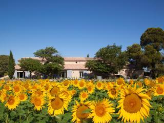 Mas de Thau - Grenache. Family gite with 3 pools - Montagnac vacation rentals