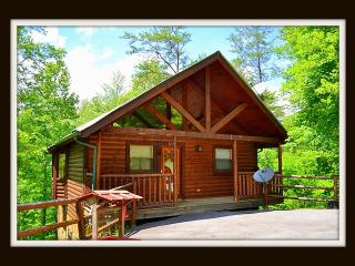 Stay at The Hiking Bear minutes to Pigeon Forge - Sevierville vacation rentals