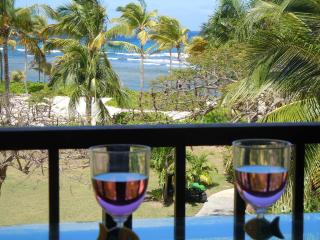 St. Criox Splendor - Christiansted vacation rentals
