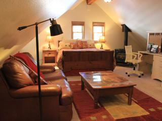 SNOW SUITE! SKI-SLED-SNOW SHOE-XCOUNTRY-PETS? - Incline Village vacation rentals