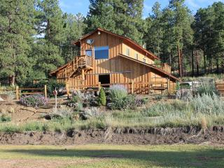 Cozy Condo with Deck and Internet Access - Durango vacation rentals