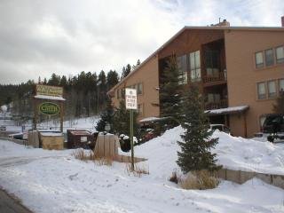 Angel Fire Condo by the slopes - Angel Fire vacation rentals