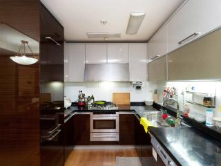 The Best Gangnam Deluxe Apartment - Seoul vacation rentals