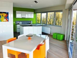 Scheldepunt ~ RA8717 - East Flanders vacation rentals