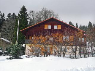 Route du Chasseron 15 ~ RA8748 - Vaud vacation rentals