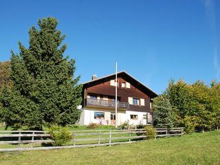 Route du Chasseron 15 ~ RA8748 - Sainte-Croix vacation rentals