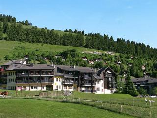 Moleson ~ RA8774 - Fribourg vacation rentals