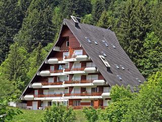 Anémone 2/16 ~ RA8873 - Les Diablerets vacation rentals
