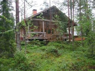Nice Cabin with Internet Access and Central Heating - Ranua vacation rentals
