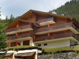 Le Faucon B5 ~ RA9008 - Vaud vacation rentals