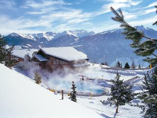 Les Bains D'Ovronnaz ~ RA9074 - Valais vacation rentals