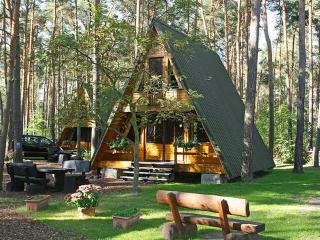 Holiday House Nepumuk ~ RA42088 - Saxony-Anhalt vacation rentals
