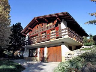 Le Tilleul ~ RA9155 - Ovronnaz vacation rentals